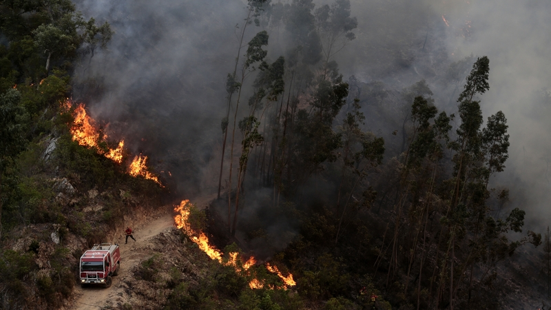 Firefighters in Portugal 2018-08